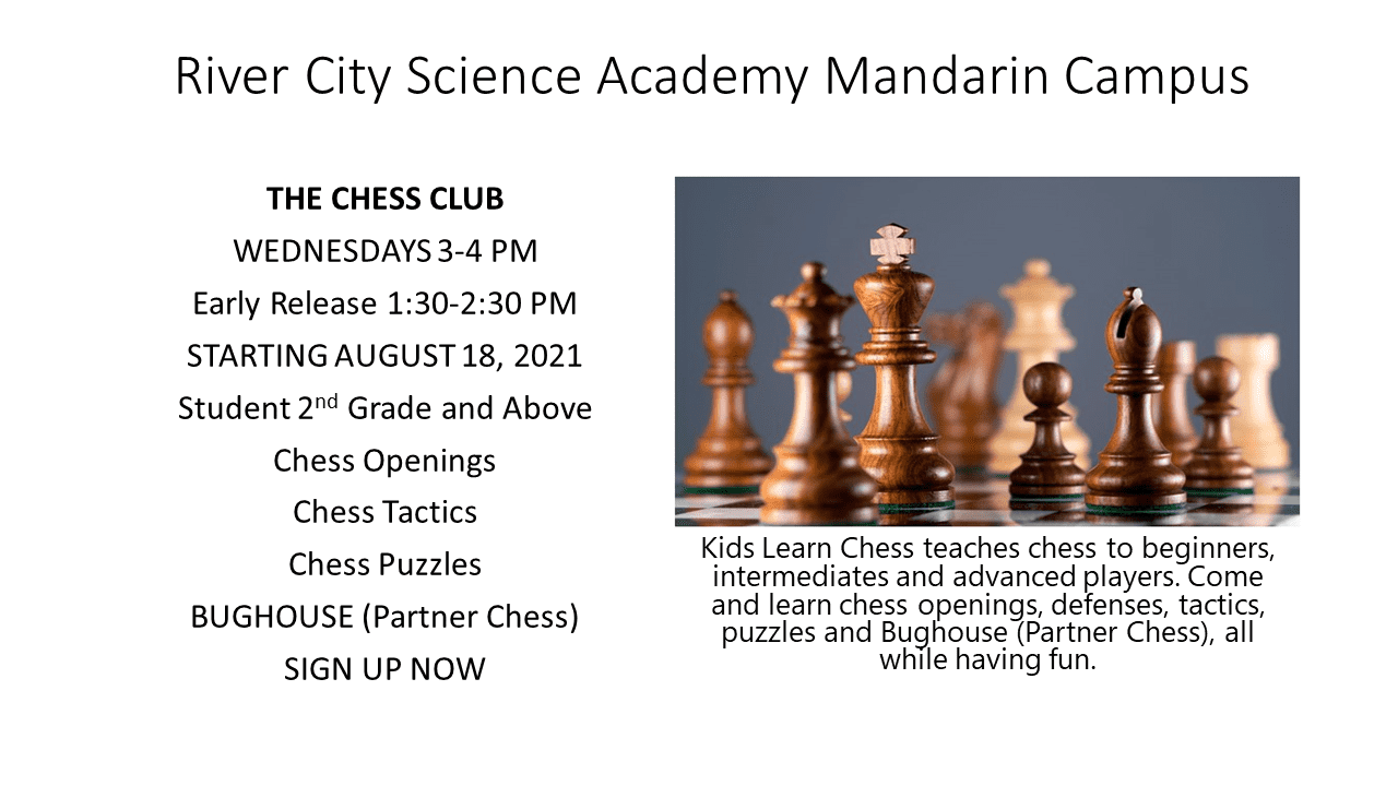 Kids Learn Chess at Schools
